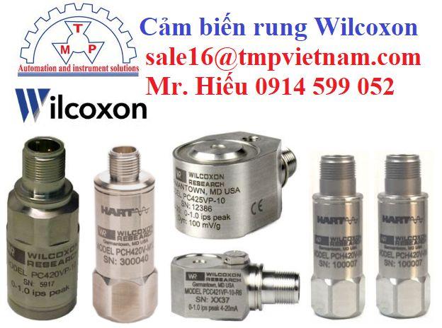 Vibration sensors (HART) - Cảm biến báo rung Wilcoxon