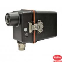 Cảm biến quét ngọn lửa 65UV5 Fireye | 65UV5 Flame Scanner