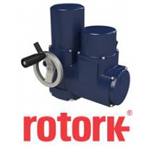 Electric Actuator 400 Series Rotork Việt Nam