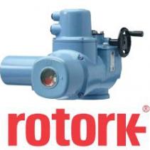 Electric Valve Actuator CK Rotork - Rotork Việt Nam