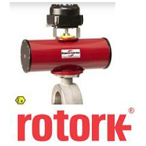RCC200 Pneumatic actuator Rotork